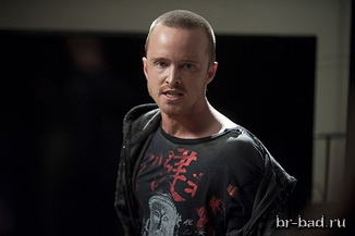 breaking-bad-bug-review-aaron-paul_article_story_main